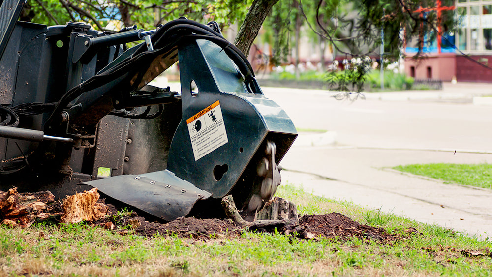 A stump grinder being used to grind a stump in a yard at Above and Beyond Tree Services Inc