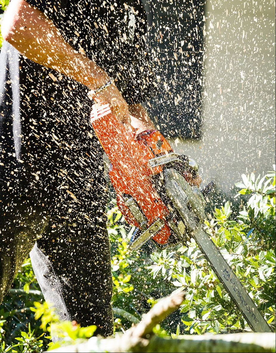 Above and Beyond Tree Services groundsman cutting wood with a chainsaw