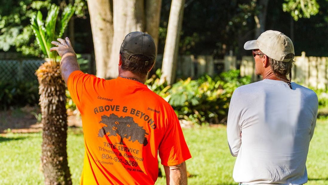 how to become an arborist in florida
